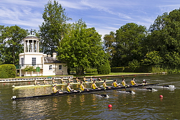 Two Rowing Eights pass Temple Island, Henley Royal Regatta, Oxfordshire, England, United Kingdom, Europe