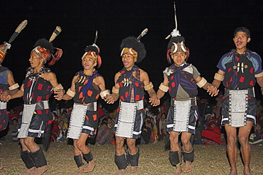 Naga men dancing at Grand Finale wearing woven cane headdress decorated with wild boar teeth, bear fur and topped with hornbill feather, and tiger teeth necklace, ivory arm bands, bear fur anklets and aprons decorated with cowrie shells, Naga New Year Festival, Lahe village, Sagaing Division, Myanmar (Burma), Asia