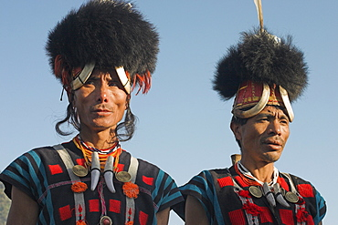 Naga men wearing headdress made of woven cane decorated with wild boar teeth, bear fur, red dyed goats hair topped with hornbill feather, and wearing tiger teeth necklace, Naga New Year Festival, Lahe village, Sagaing Division, Myanmar (Burma), Asia