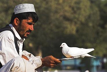 Man feeding the famous white pigeons, Shrine of Hazrat Ali, Mazar-I-Sharif, Balkh province, Afghanistan, Asia