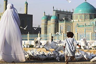 Lady in burqa feeding famous white pigeons whilst child chases them, Shrine of Hazrat Ali, Mazar-i-Sharif, Balkh, Afghanistan, Asia
