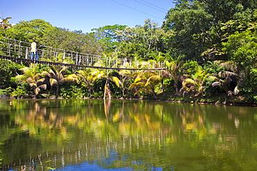 Gumba Limba Park, Roatan, Bay Islands, Honduras, Central America