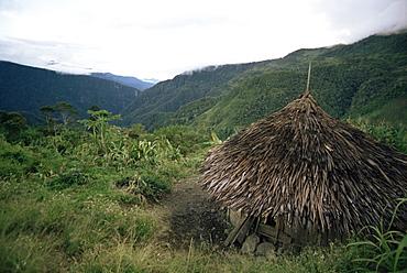 Yali house, Membegan, Irian Jaya, Indonesia, Southeast Asia, Asia