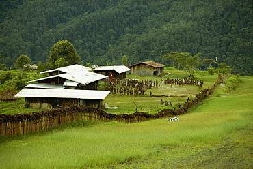 Airstrip, South Beliam Valley, Irian Jaya, Indonesia, Southeast Asia, Asia