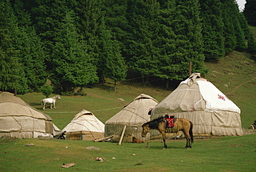 Yurts and horses near Lake Tianche in Xinjiang Province, China, Asia