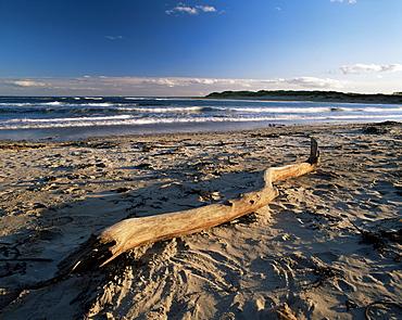 Beach and sea at dusk, Alnmouth, Northumberland, England, United Kingdom, Europe