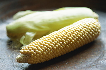Close-up of uncooked corn on the cob