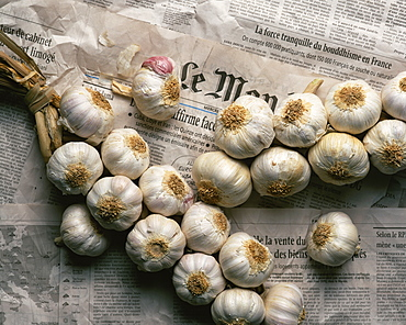 Strings of garlic spread out on Le Monde newspaper in France, Europe