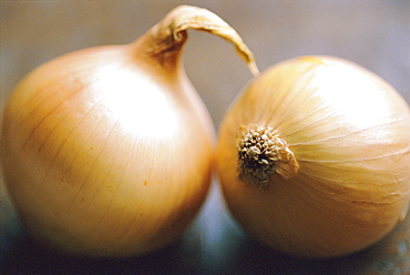 Studio shot of two onions