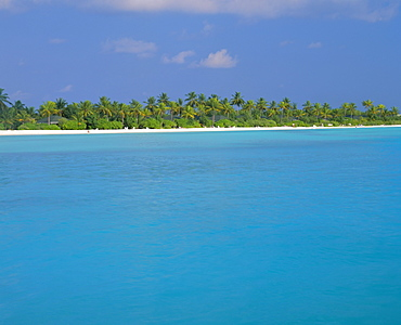 North Male Atoll, The Maldives, Indian Ocean, Asia