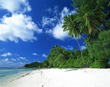 Beach, Anse Severe, La Digue, Seychelles, Indian Ocean, Africa