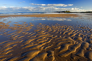 View across Embleton Bay at low tide towards the ruins of Dunstanburgh Castle, near Alnwick, Northumberland, England, United Kingdom, Europe