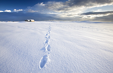 Footsteps in freshly-fallen snow leading off into distance towards dramatic winter sky, Alnmouth, near Alnwick, Northumberland, England, United Kingdom, Europe