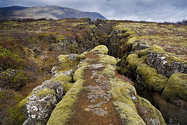 Fault in the landscape caused by continental drift between North American and Eurasian tectonic plates at Thingvellir National Park near Reykjavik, Iceland, Polar Regions