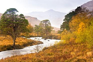 Autumn view along Torridon River and Glen Torridon, Wester Ross, Highlands, Scotland, United Kingdom, Europe