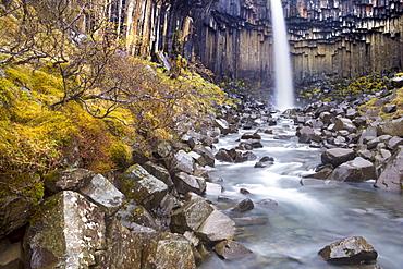 Svartifoss waterfall in the Skaftafell National Park, Iceland, Polar Regions