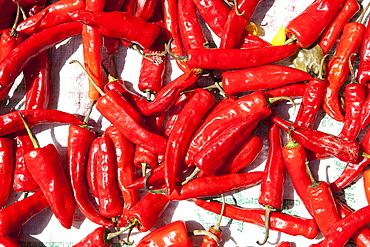 Red chillis drying in the sun Punakha Valley, Bhutan, Asia