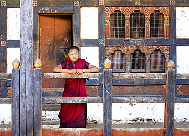 Young Buddhist monk at the Wangdue Phodrang Dzong, Wangdue Phodrang (Wangdi), Bhutan, Asia