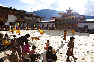 Masked dance in the main courtyard of the Gangte Goemba while local people and tourists watch during the Gangtey Tsechu, Gangte, Phobjikha Valley, Bhutan, Asia