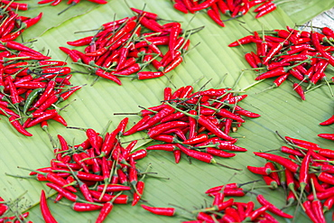 Red chillies on sale in town market, Kengtung (Kyaingtong), Shan State, Myanmar (Burma), Asia