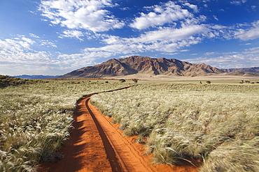 Sand road cutting across grassy landscape towards mountains, Wolwedans, Namib Rand Game Reserve, Namib Naukluft Park, Namibia, Africa
