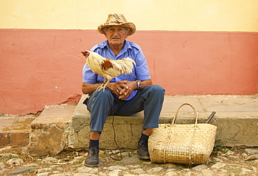 Local man wearing straw hat with cockerel standing on his knee, Trinidad, Cuba, West Indies, Central America