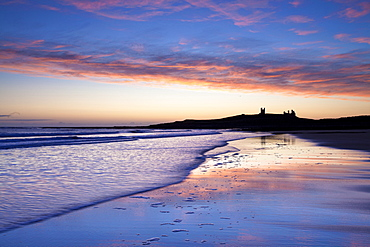 Looking across Embleton Bay at sunrise towards the silhouetted ruins of Dunstanburgh Castle in the distance and the vivid colours in the sky reflecting in the sea and wet sand, Embleton, near Alnwick, Northumberland, England, United Kingdom