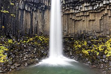 Svartifoss waterfall, Skaftafell National Park, South Iceland, Polar Regions