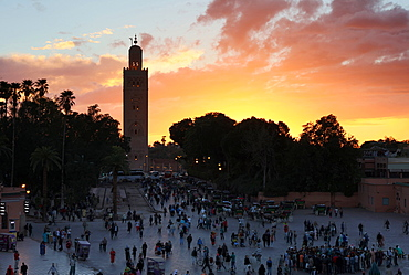 View towards the Koutoubia Minaret at sunset from the Djemaa el Fna, Marrakech, Morocco, North Africa, Africa