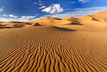 Wide angle view of the ripples and dunes of the Erg Chebbi Sand sea, part of the Sahara Desert near Merzouga, Morocco, North Africa, Africa