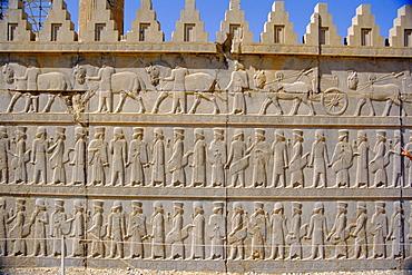 Apadama staircase, Persepolis, Iran, Middle East