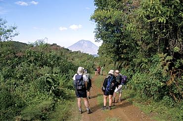 Trekkers and Oldonyo Lengai volcano, Ngorongoro Conservation Area, Tanzania, East Africa, Africa