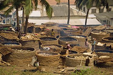 Women drying fish over charcoal, Elmina, Ghana, West Africa, Africa