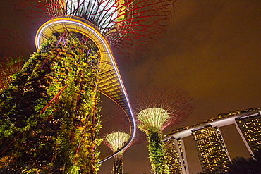 Garden Rhapsody music and lights show in the Supertrees at Gardens by the Bay, Singapore, Malaysia, Southeast Asia, Asia