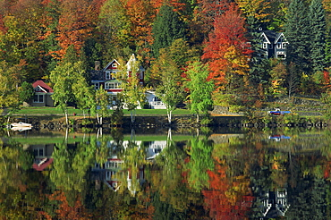 Lakeside houses and fall foliage, Saranac, Adirondack, New York State, United States of America, North America