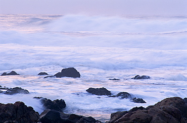 Waves pounding rocks off Mossel Bay on the Garden Route, Cape Province, South Africa, Africa - 365-2718