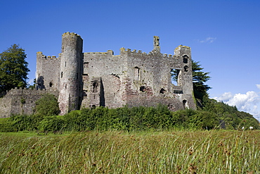 Laugharne castle, Laugharne, Carmarthenshire, South Wales, United Kingdom, Europe - 365-3823