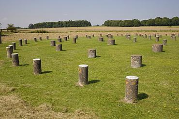 Woodhenge, showing circular design, Amesbury, Wiltshire, England, United Kingdom, Europe - 365-3841