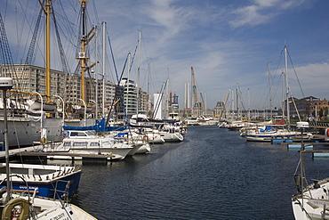 Mercator Marina with many moored boats, Ostend, Belgium, Europe - 365-3853