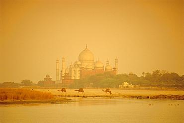 The Taj Mahal, built by the Moghul emperor Shah Jehan (Jahan) seen from across the Jumna (Yamuna) River, Agra, Uttar Pradesh, India