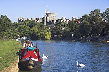 Windsor castle and river Thames, Berkshire, England, United Kingdom, Europe