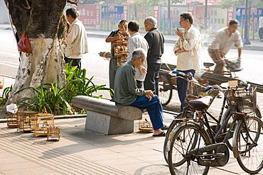 Bird fanciers on city street, Guangzhou (Canton), Guangdong, China, Asia