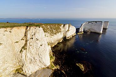 Studland Head, Old Harry Rocks, beginning of the Jurassic Coast, UNESCO World Heritage Site, Dorset, England, United Kingdom, Europe