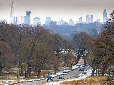City skyline from Richmond Park, London, England, United Kingdom, Europe