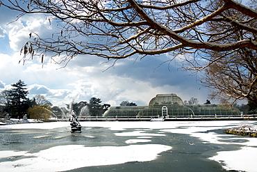 Palm House, Kew Gardens in winter, UNESCO World Heritage Site, London, England, United Kingdom, Europe