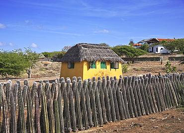 Typical house with cactus fence, Kralendijk, Bonaire, Netherlands Antilles, Caribbean, Central America