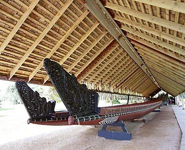 War canoe (Ngatokimatawhaorua in Maori language), 35m long, 80 rowers, Canoe House, Waitangi National Reserve, Waitangi, Bay of Islands, Northland, North Island, New Zealand, Pacific