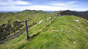 Farmland on the Tora Coastal Walkway, Wairarapa, North Island, New Zealand, Pacific