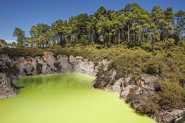 The Devil's Bath, Waiotapu Goethermal Wonderland, Rotorua, New Zealand, Oceania