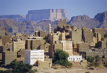 Multi-storey mud brick houses, Habban, Lower Hadramaut, Yemen, Middle East
